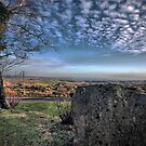 View from... by Richard Horsfield