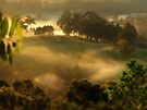 """Sunlight Mist"" by debsphotos"