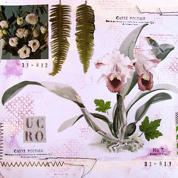 Vintage Botanical Collage by collageDP