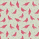 Birds again - new and improved by Davida Fernandez