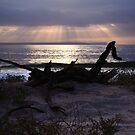 A New Dawn! by JadeHarmony