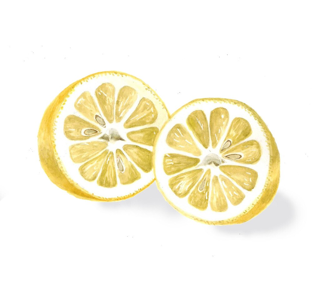 Sliced Lemon by Maureen Sparling