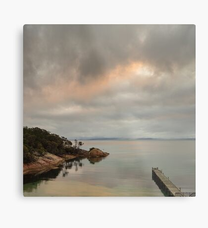 Beautiful Tassie Metal Print