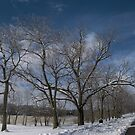 Winter Road by Ed Michalski