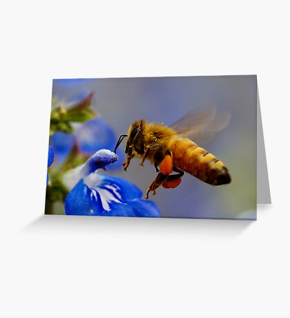 Coming in to Land... Greeting Card