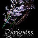Divine Light by Melissa Park
