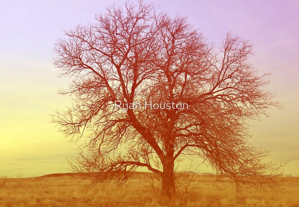 Tree - Saratoga Springs, Utah by Ryan Houston