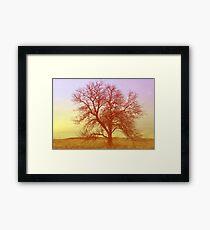 Tree - Saratoga Springs, Utah Framed Print