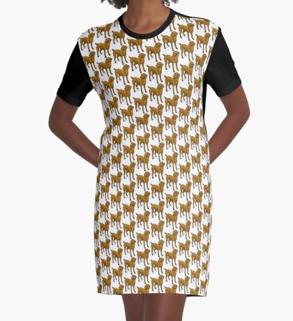 Vizla Graphic T-Shirt Dress