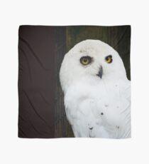 Snowy Owl Scarf