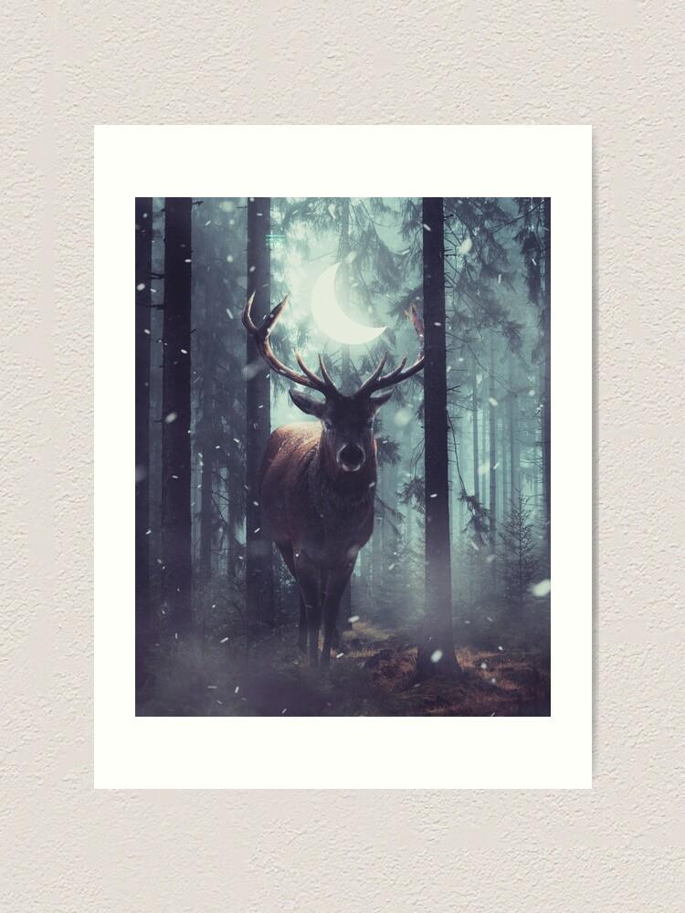 Alternate view of Forest Dweller Art Print