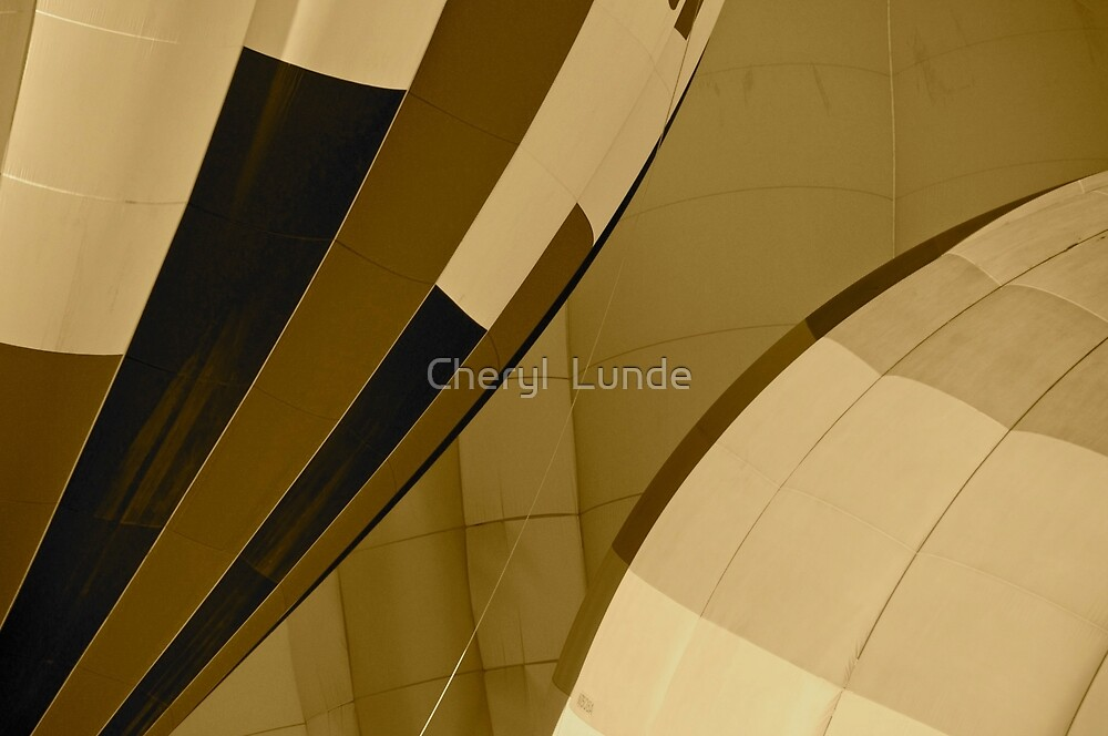 Curves by Cheryl  Lunde