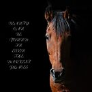 Shadow Horse Inspiration by Robert Goulet