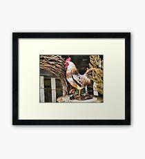 Struttin' Around the Barn Yard Framed Print