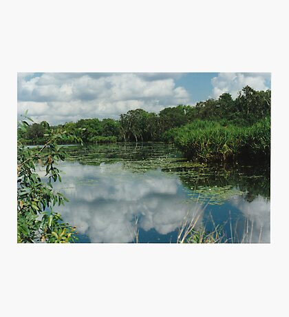 Berry Springs Photographic Print