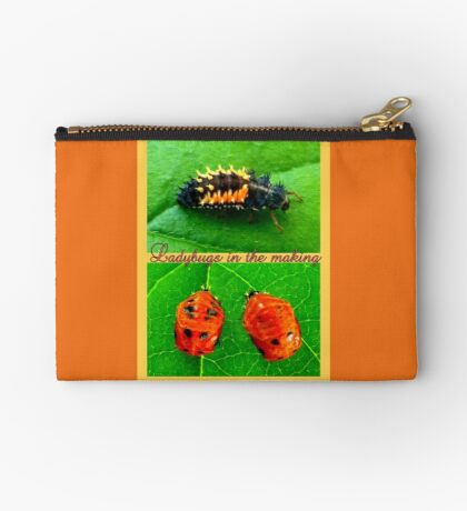 Ladybugs in the making Studio Pouch