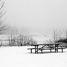 Picnic Table in Winter by doctorphoto