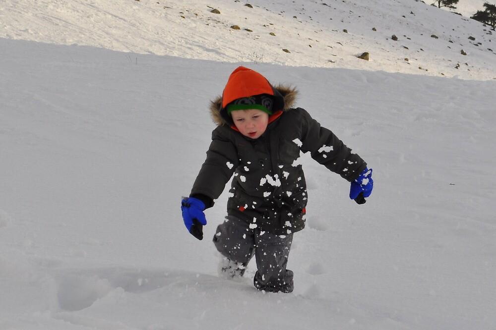 Snow by Julie Lunan