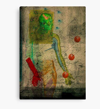 The mirror - face B Canvas Print
