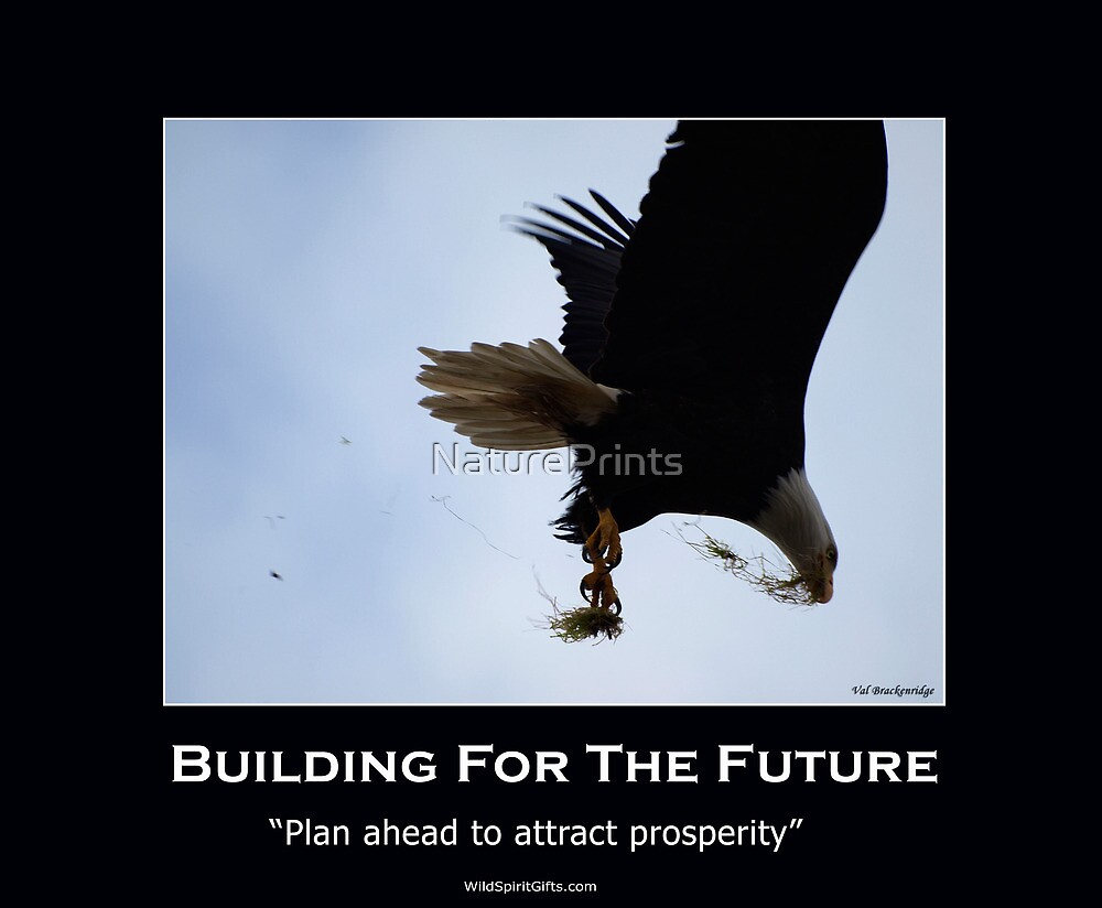 Bald Eagle Motivational Poster by NaturePrints