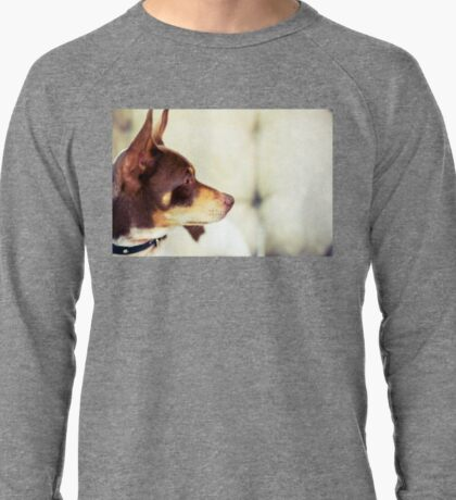 Red Dog Lightweight Sweatshirt