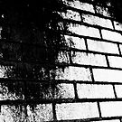 Brick Rot by Josh Prior