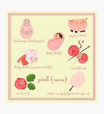 Colors: pink (Los colores: rosa) Photographic Print