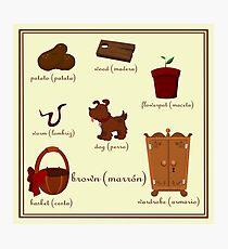 Colors: brown (Los colores: marrón) Photographic Print