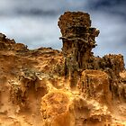 Petrified Forest ( HDR ) by Ian Creek