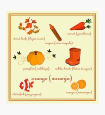 Colors: orange (Los colores: naranja) Photographic Print