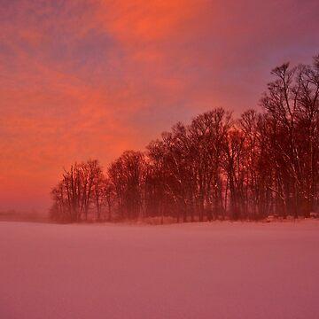 Dawn Dreaming by colorfulbundles