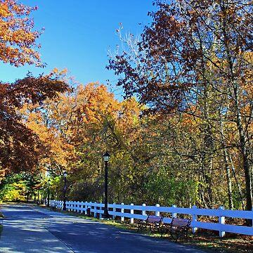 Beautiful Autumn Solitude by Michiale