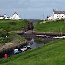 158 - SEATON SLUICE HARBOUR - DAVE EDWARDS - (D.E. 2008) by BLYTHPHOTO