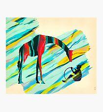 Africa Giraffe Boy Collage Photographic Print