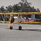 Boeing Stearman at Take-off by Stephen Horton