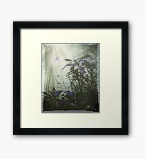 At the bottom of the garden. Framed Print