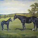 Quarterhorses by Birgit Schnapp