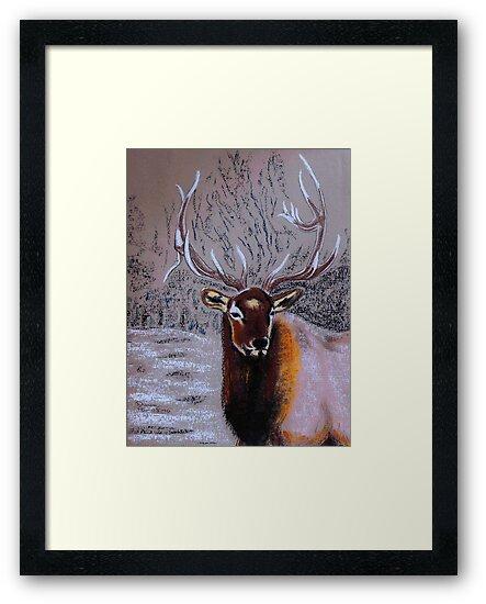 Stag by Dawn B Davies-McIninch
