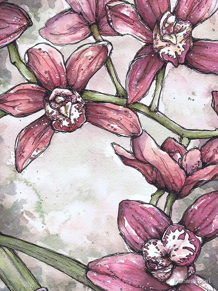 Orchideen - Aquarell und Tintengrafik von joanandrose1