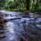 Colorado Creek by Kathy Weaver