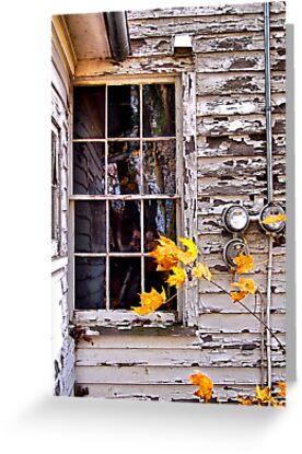 Autumn's Quiet Reflections by wiscbackroadz