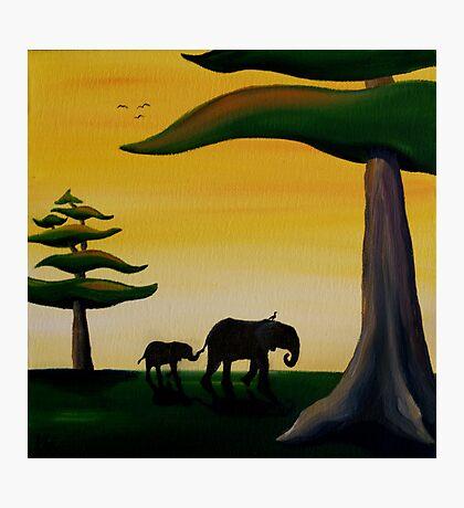 Elephant Silhouette Photographic Print