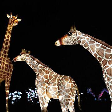 "Chinese fairy ""Giraffe"" by DiesIraeKaa"