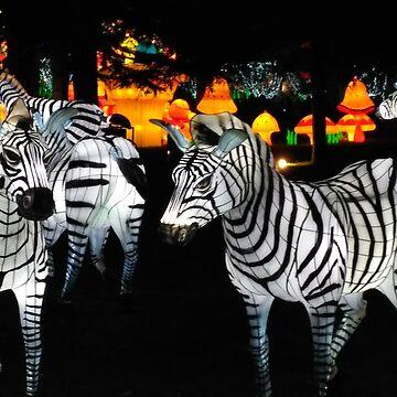 """Chinese fairy """"Zebra"""" by DiesIraeKaa"""