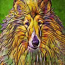 Abstract Rough collie by lynnamarie