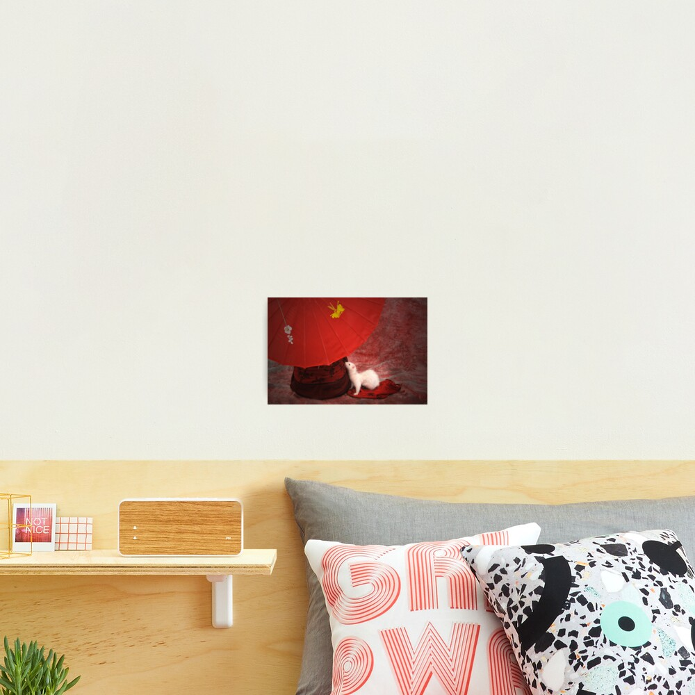 Red Passion Photographic Print