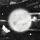 Moths on the Moon by katherineblower
