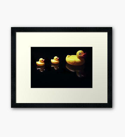 Ducks in Line Framed Print