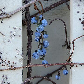 Blue by elaine226
