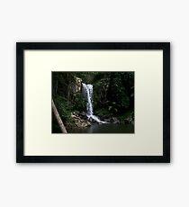 Curtis Falls - Mount Tambourine Framed Print